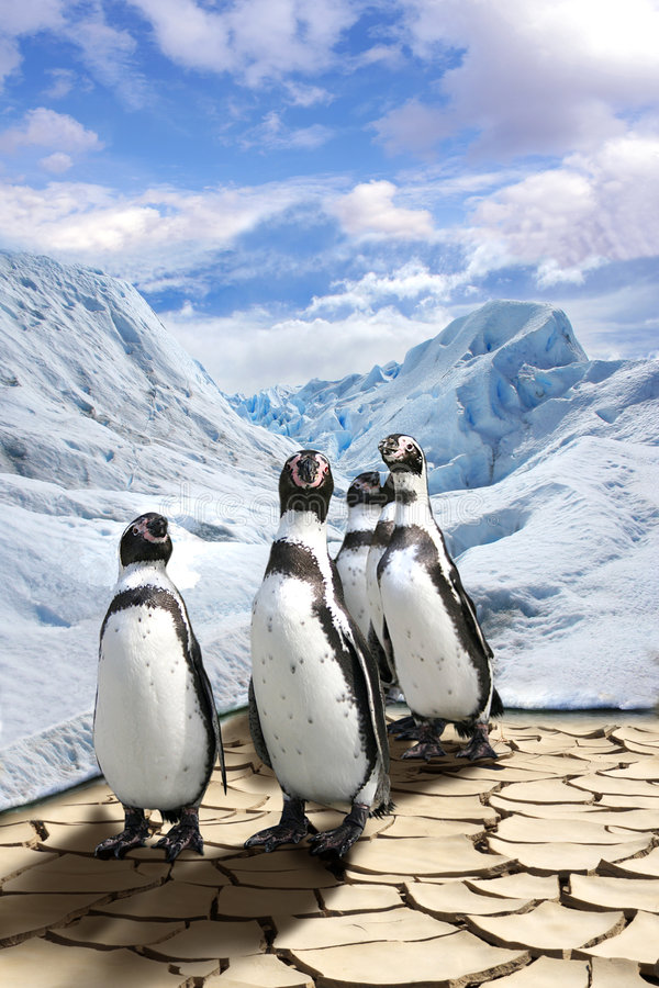 globalne ocieplenie zdjęcie royalty free