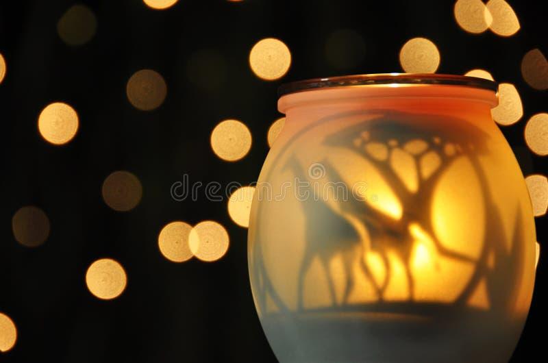 Globe abstrait de bougie de coucher du soleil de girafes de fond photographie stock