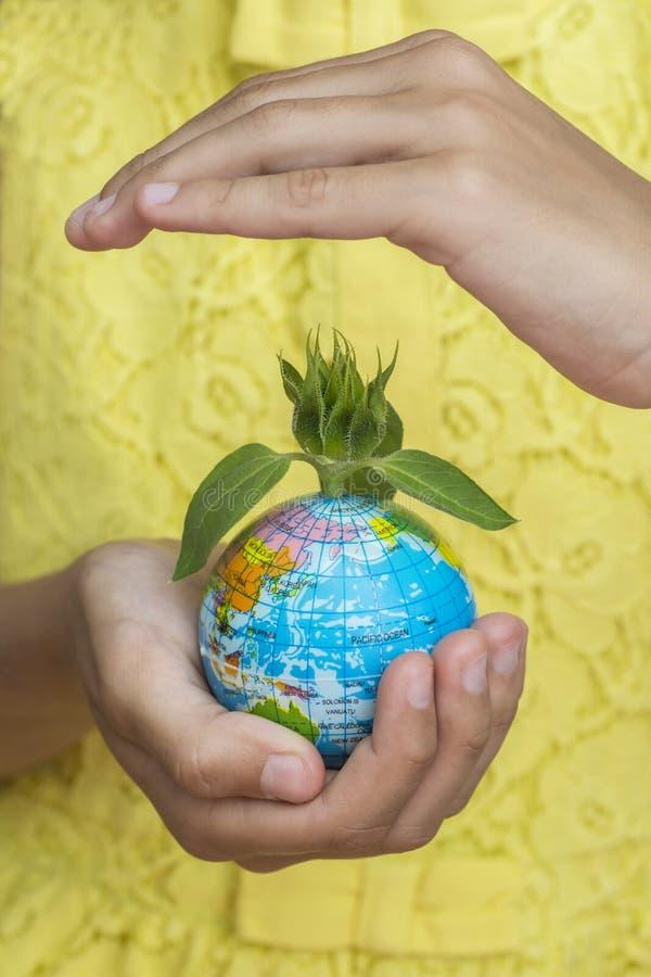 Globe avec lui à dissoudre du tournesol, couvert de main supérieure image libre de droits