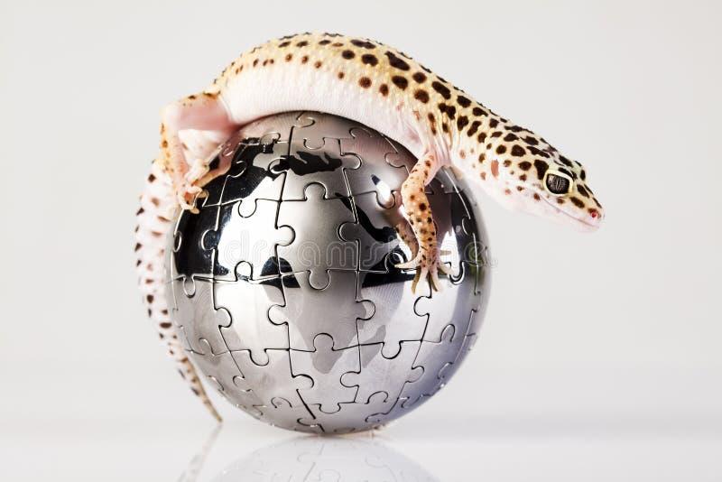 Globe dans le gecko photographie stock libre de droits