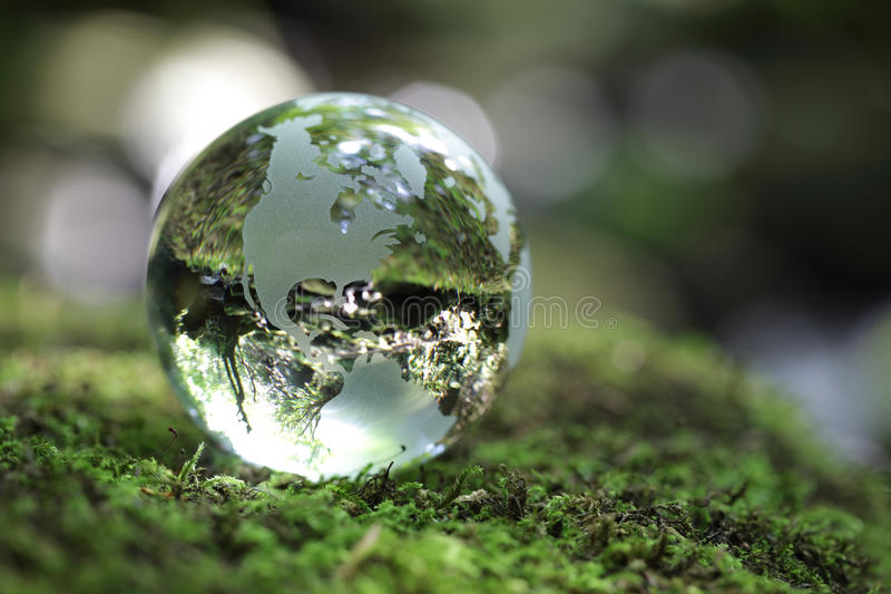 Globe in the forest royalty free stock images