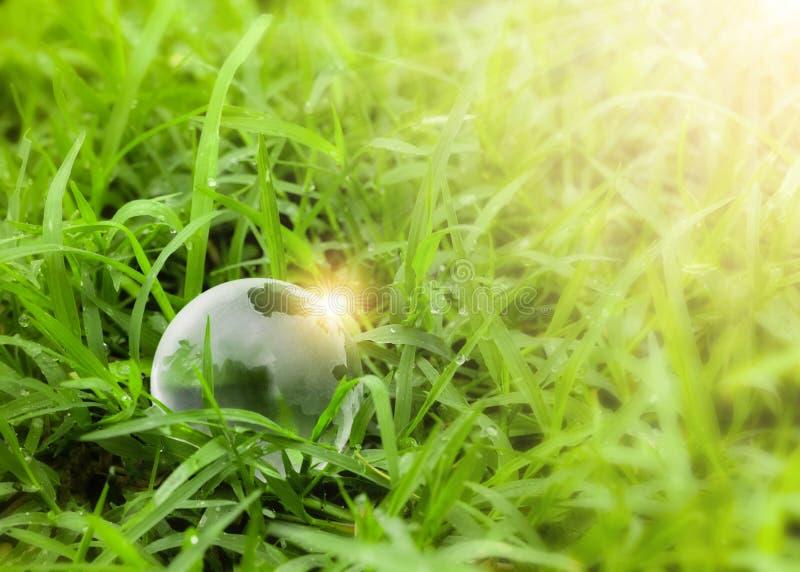 Globo de cristal do conceito da ecologia que descansa na grama fotografia de stock royalty free