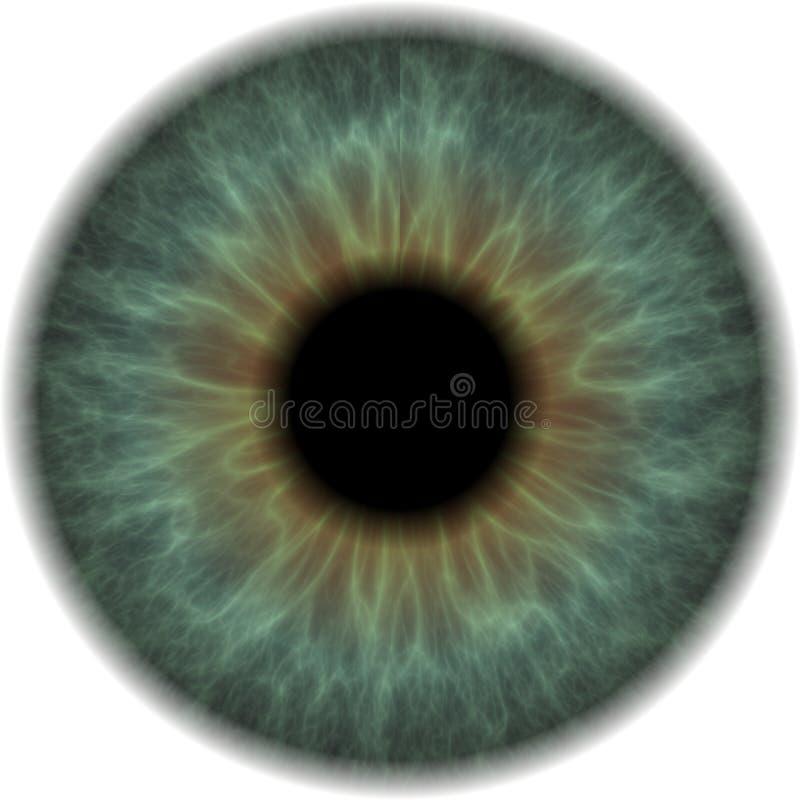 Globo del ojo stock de ilustración