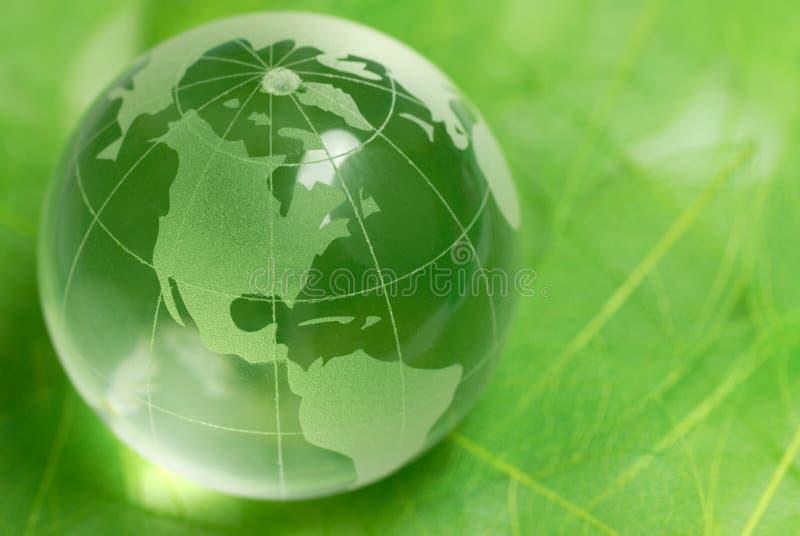 Globo di cristallo sul foglio verde immagini stock libere da diritti