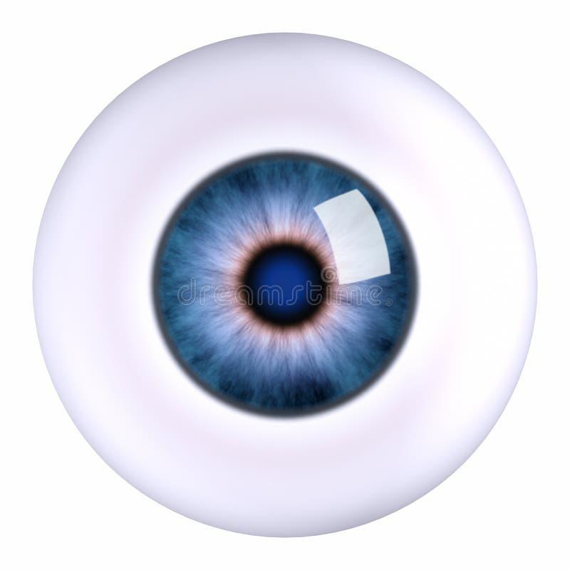 Globo ocular do olho ilustração royalty free