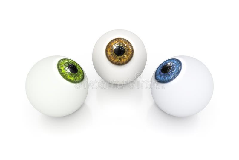 Globo ocular verde e azul de Brown ilustração royalty free