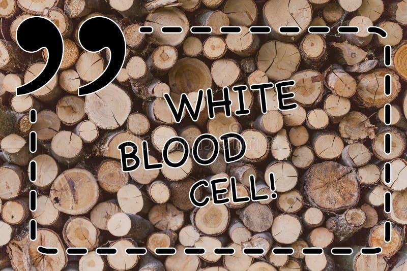 Globule blanc d'apparence de signe des textes Leucocytes conceptuels de photo responsable de protéger le corps contre des infecti photo libre de droits