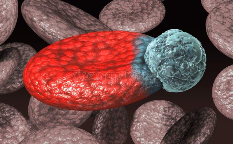Globule sanguin avec le virus illustration de vecteur