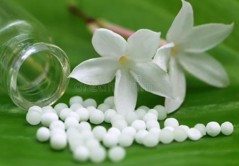 Globules d'homéopathie avec la fleur de fines herbes image libre de droits