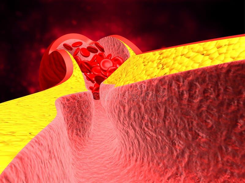 Globules rouges avec le wain illustration de vecteur