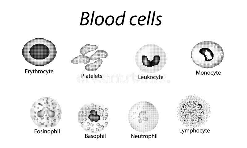 Globules sanguins Ensemble de cellules monochromes Globules rouges, plaquettes, leucocytes, lymphocytes, ?osinophiles, neutrophil illustration de vecteur