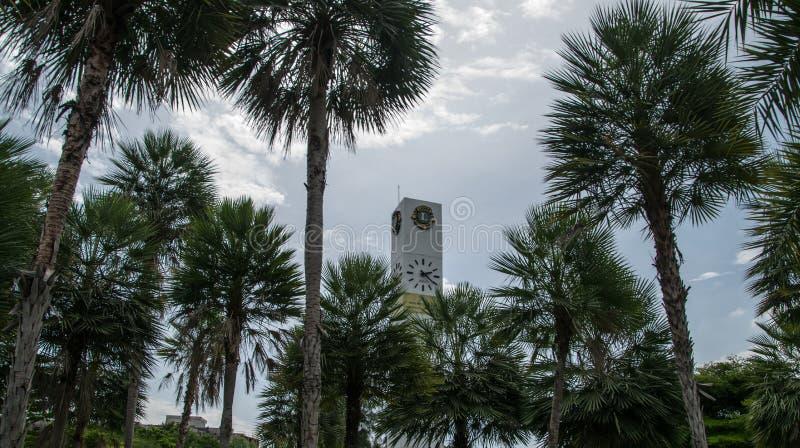Glockenturm unter vielen Bäumen stockfotografie