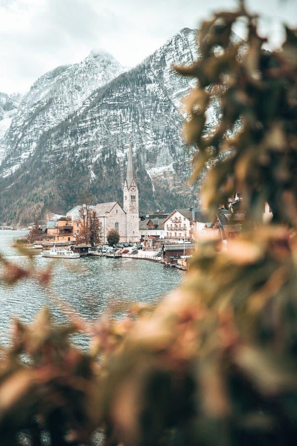Glockenturm von Hallstatt-Dorf durch Blätter lizenzfreie stockfotografie