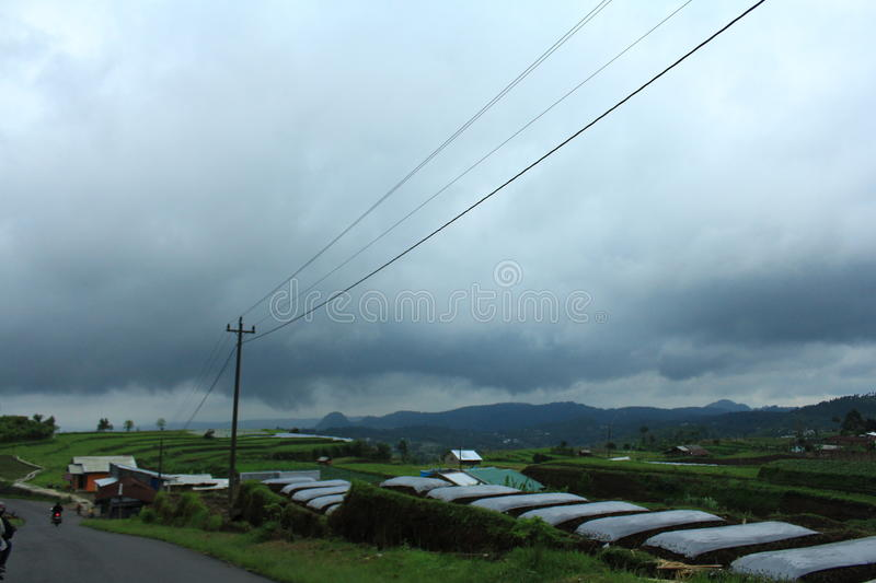 Gloomy Agricultural Farm Landscape stock photo