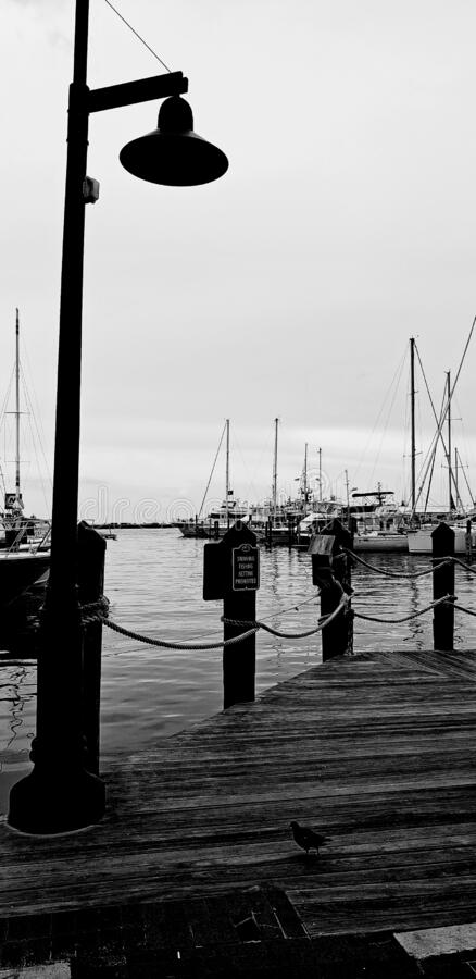 Gloomy day on the dock stock images