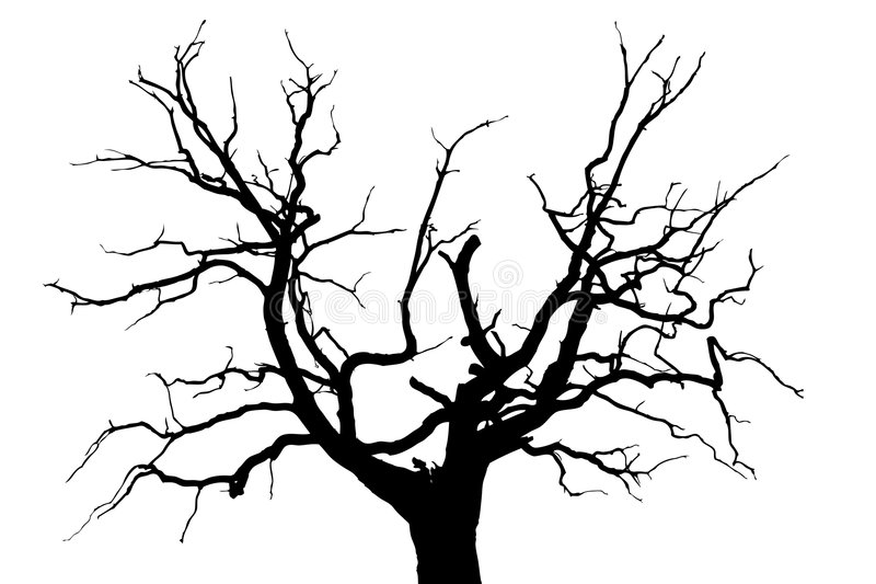 Gloomy dead tree. A gloomy bare oak tree vector illustration