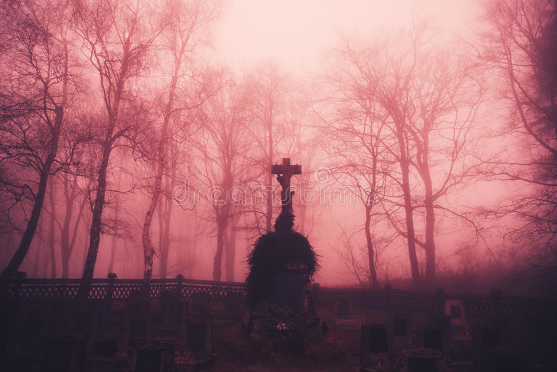 Gloomy forest graveyard stock photos