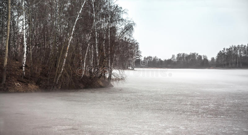 Gloomy landscape on frozen foggy lake with trees in season between winter and spring stock images