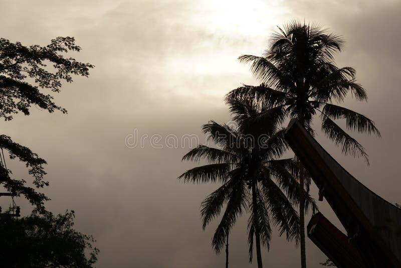 Gloomy morning at toraja road royalty free stock photography