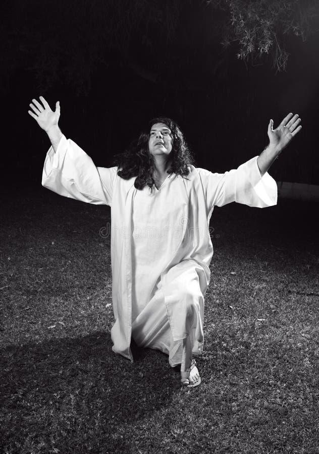 Download Glorifying God stock image. Image of proclaim, praising - 3181315