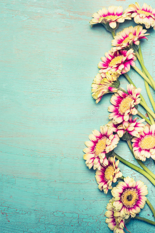 Glorious flowers bunch on turquoise blue shabby chic background , top view, border. stock photos