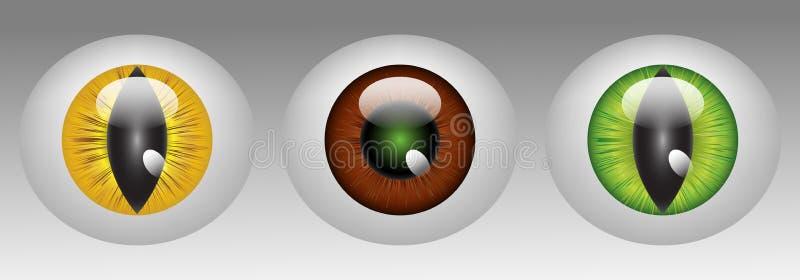 Glossy animal eyeballs