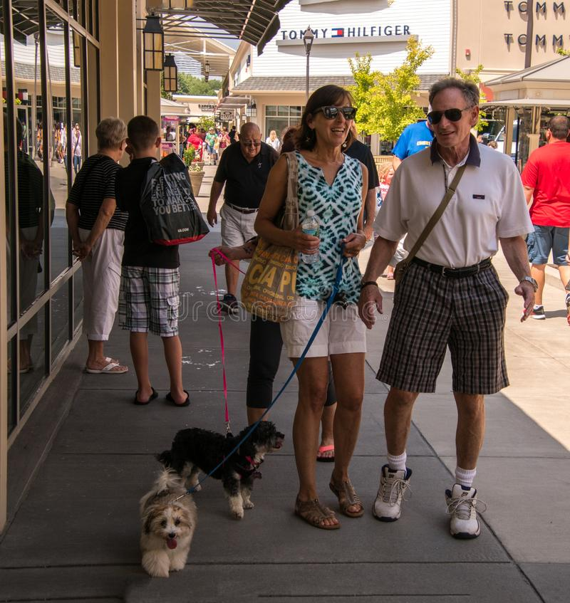 Baby boomer senior couple walking their two dogs at the Gloucester Premium Outlet mall royalty free stock photos