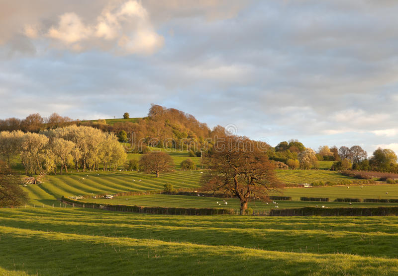 Gloucestershire Landschaft lizenzfreie stockfotografie