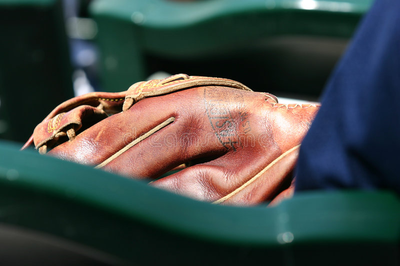 Download The glove stock photo. Image of green, sports, fans, daylight - 200946