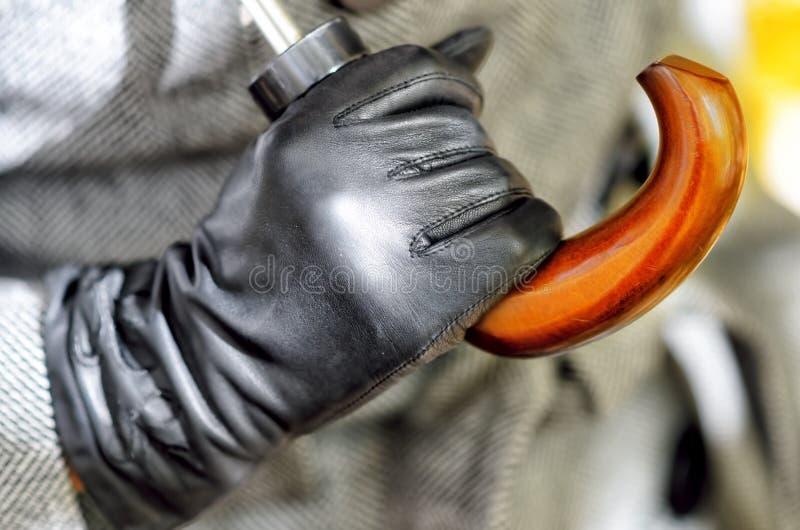 Download Glove stock photo. Image of modern, fashion, glamour - 27206366