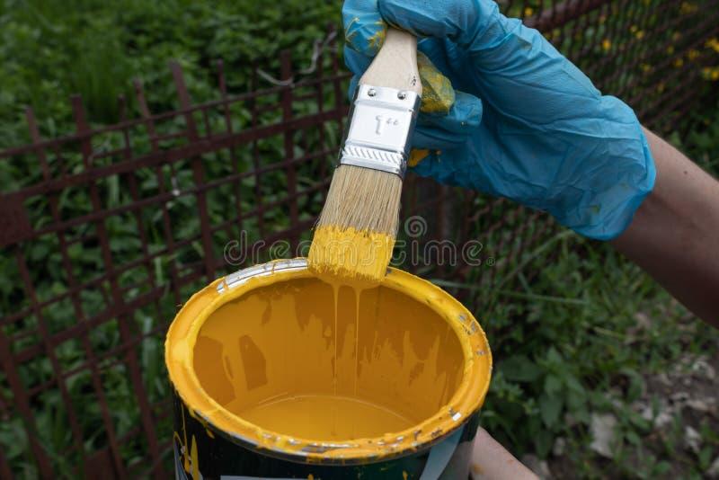Gloved hand die een borstel houden die in gele verf wordt doorweekt, bovenmatige verf stroomt terug in het blik stock afbeelding