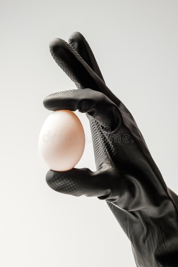 A gloved hand holds a single chicken egg. royalty free stock images