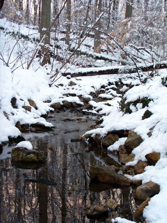 Download Gloverparkvinter fotografering för bildbyråer. Bild av natur - 514365