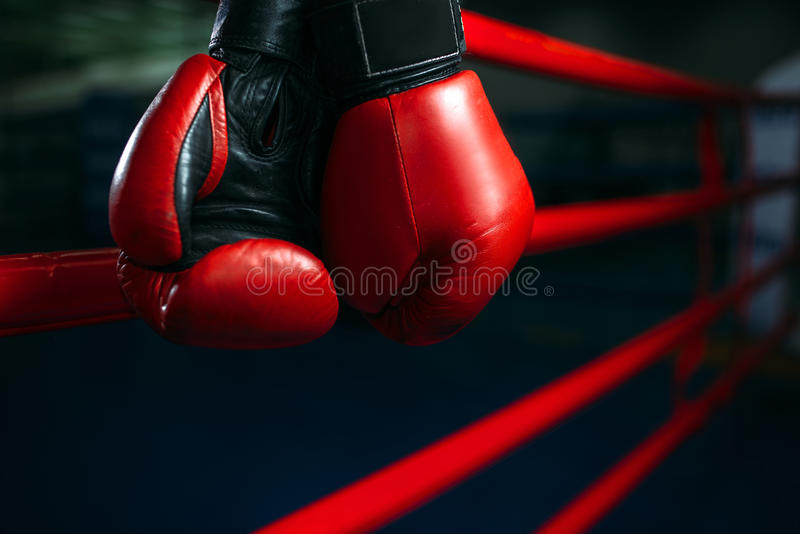 Gloves on the ring ropes, boxing concept, nobody. Red gloves on the ring ropes, boxing concept, nobody. Martial arts symbol stock photography
