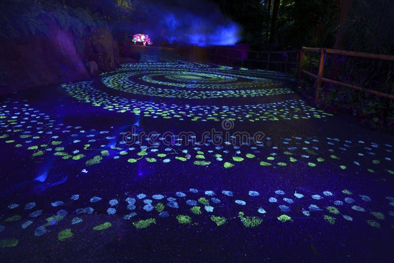 Glow-in-the-dark path in Singapore. Glow-in-the-dark path at Night Safari, Singapore stock photo
