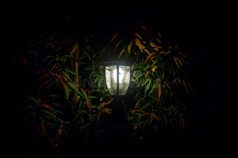 By The Glow of the Garden Lantern stock photo