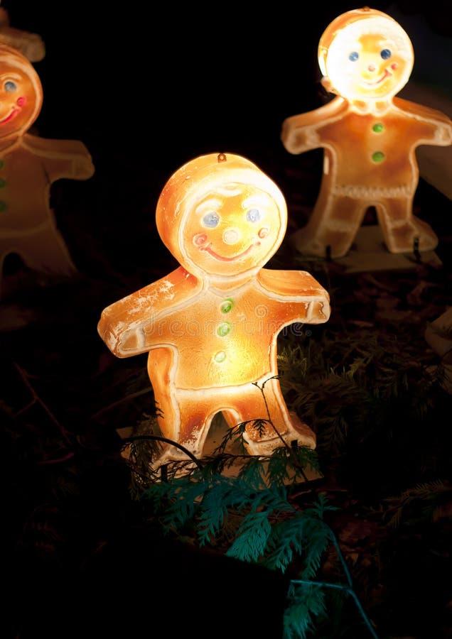 Download Glow ginger stock illustration. Image of person, illustration - 22724325