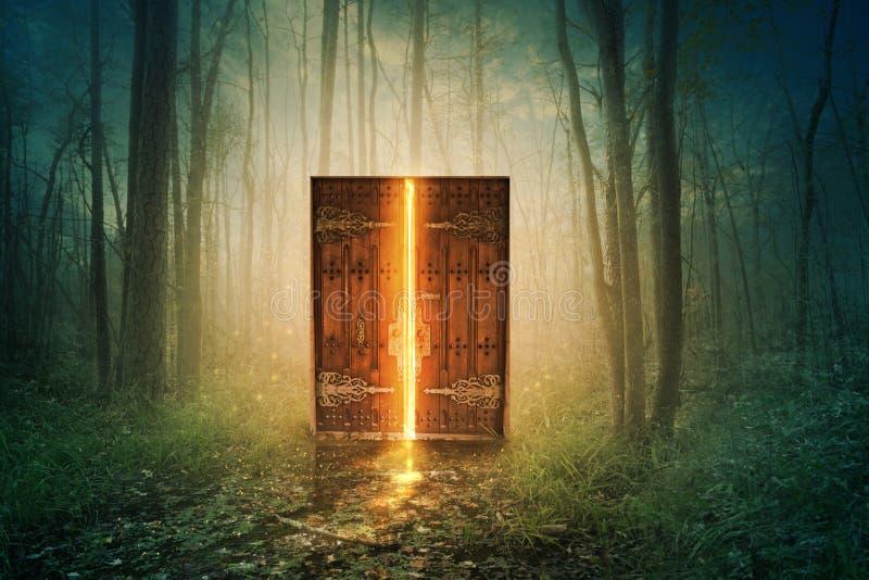 Glowing door in forest stock images