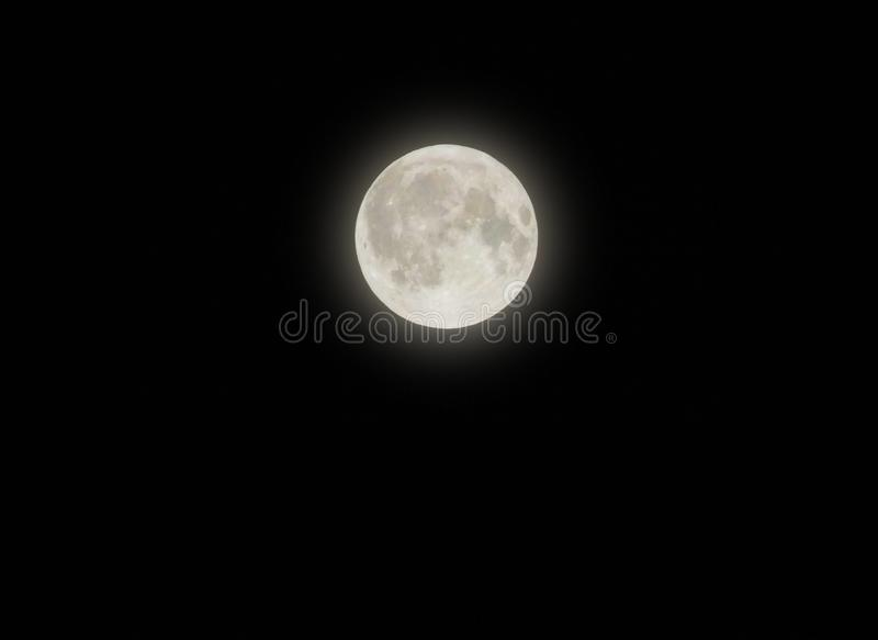 Glowing full harvest moon in a black night sky royalty free stock images
