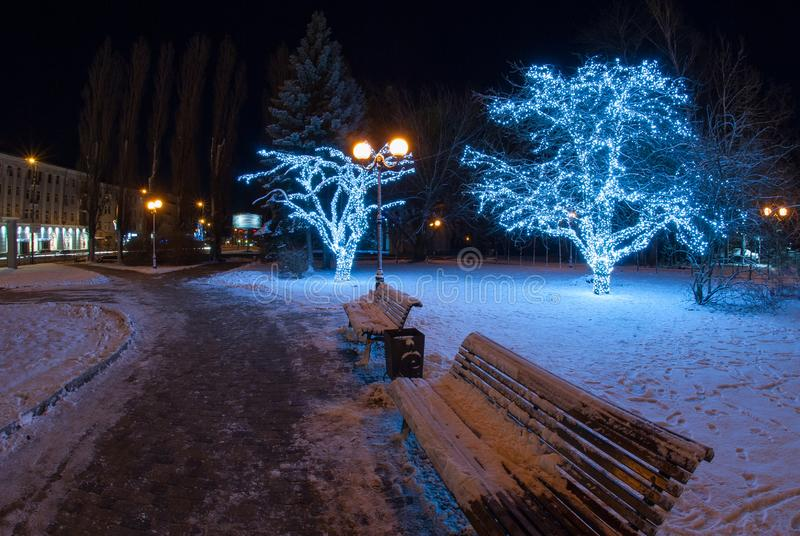 Beautiful winter evening with decorated trees stock photography