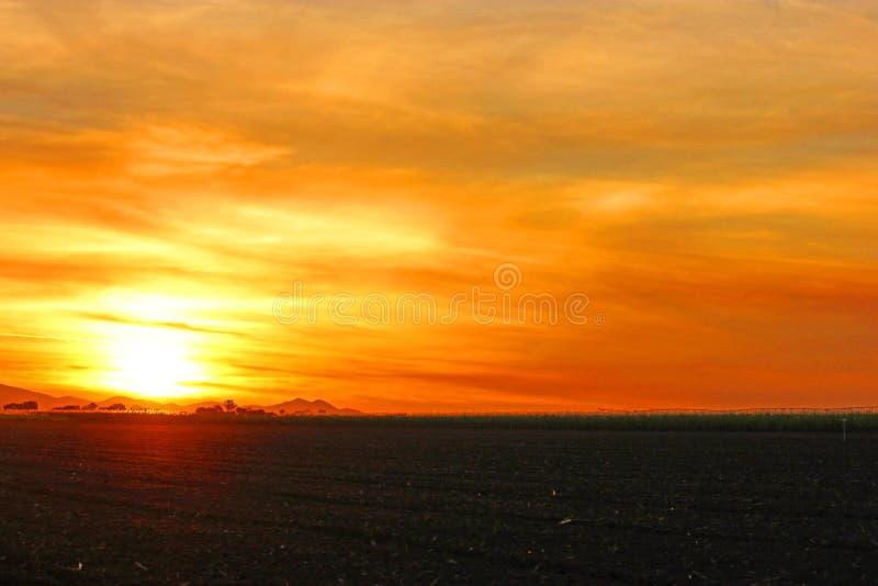 Glowing orange and golden sunset over sugarcane. July 6 2011 Proserpine Queensland Australia. A beautiful Glowing orange and golden sunset over a sugarcane farm stock photos