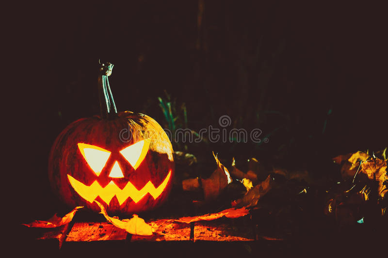 Glowing pumpkin symbolizing the head of old Jack. With autumn leaves night in a spooky dark background. Soft focus. shallow DOF stock photo
