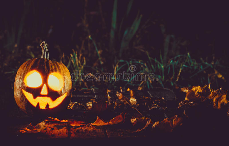Glowing pumpkin symbolizing the head of old Jack. With autumn leaves night in a spooky dark background. Soft focus. shallow DOF royalty free stock image