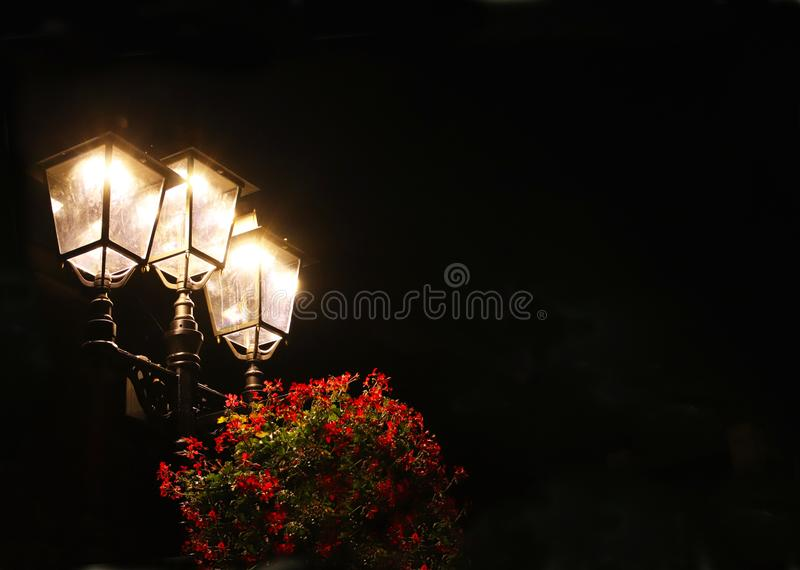 Glowing street lamp with red flowers on a black background. Place for inscription. Triple light source at night. Illumination of t. He city and streets in the stock photography