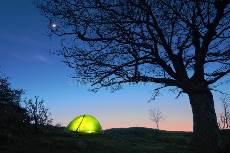 Glowing Tent Under Bare Tree, Sicily royalty free stock photography