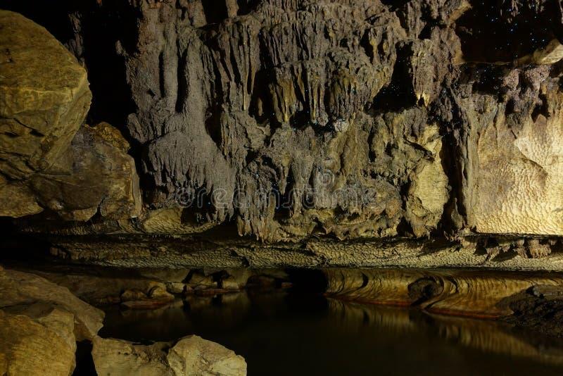 Glowworm jama blisko do Waitomo, Nowa Zelandia obrazy royalty free