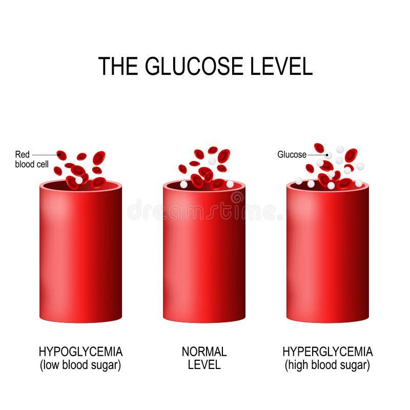 Glucose dans le vaisseau sanguin illustration stock