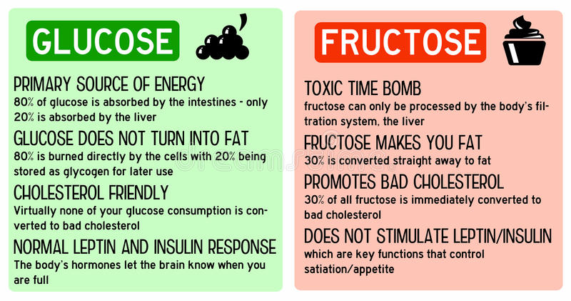 Glukosefruchtzucker vektor abbildung