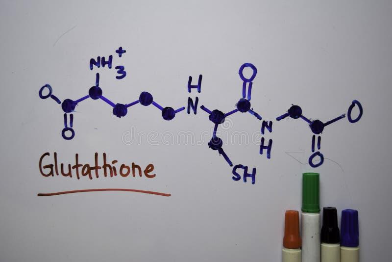Glutathion Belangrijk in planten en dieren schrijft molecuul op het witte bord Structurele chemische formule Onderwijsconcept royalty-vrije stock fotografie