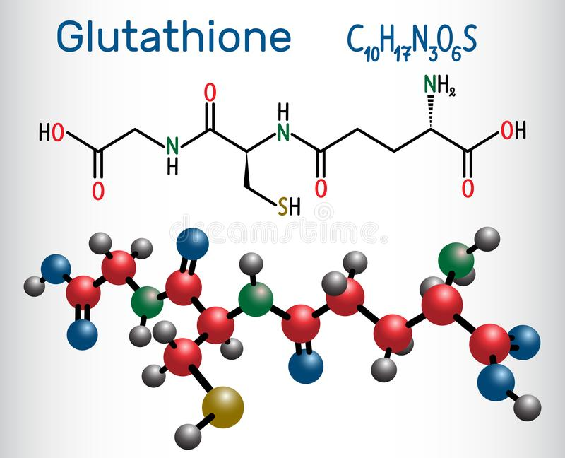 Glutationu GSH molekuła, jest znacząco przeciwutleniaczem w roślinie ilustracja wektor